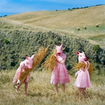polixeni-papapetrou-the-harvesters