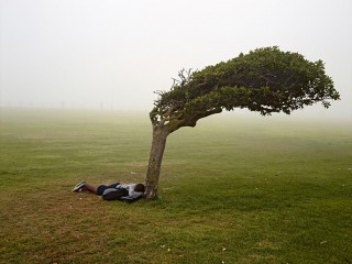 Pieter Hugo - Green Point Common, Cape Town, 2013, from the series Kin
